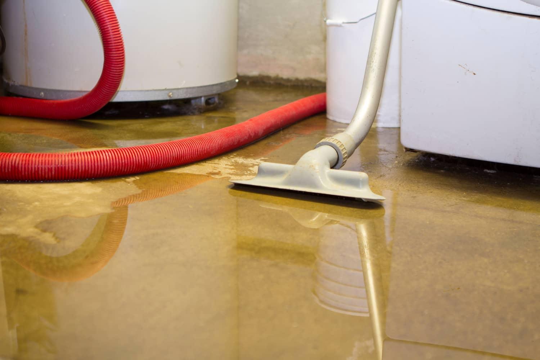 water damage repair bradenton